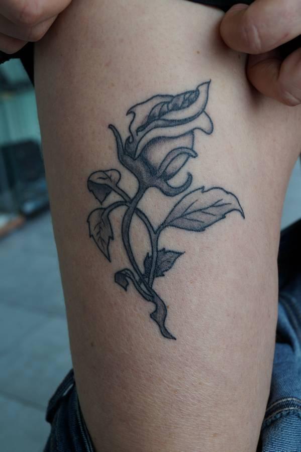 noir-ombrage-jambe-rose-47
