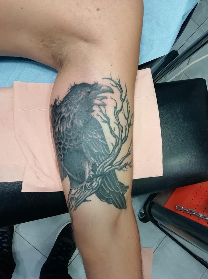 tatouage corbeaux oiseaux harbre bras noir nombrage 77
