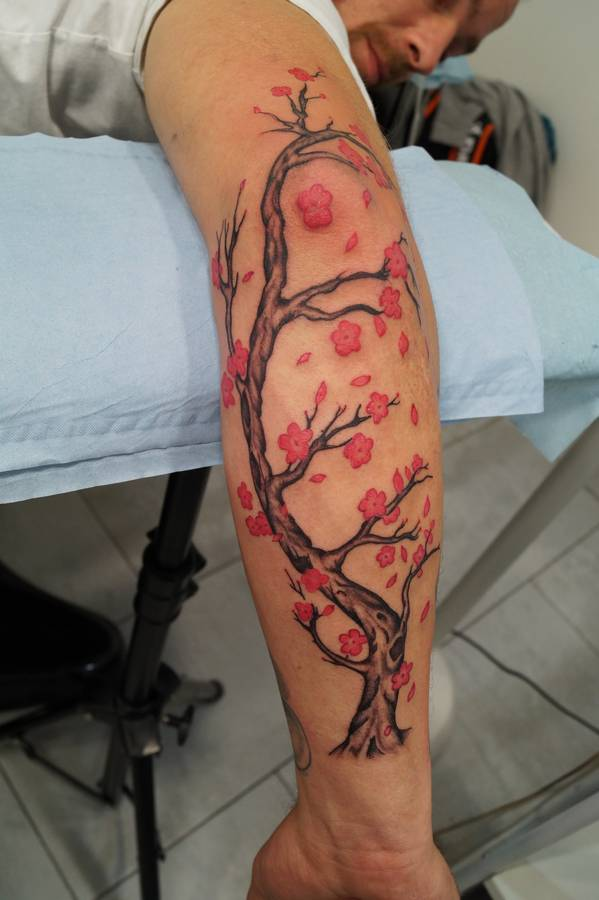 tattoo-couleurs-cerisier-du-japon-5